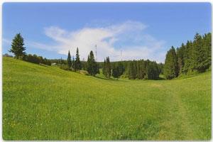 The hill Karosmeshka